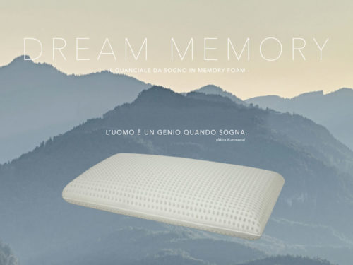 DREAM MEMORY